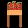 apples-shelf.png