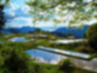 杉山 - コピー.jpg