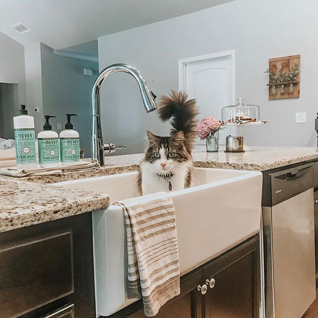 Farmhouse Sink for the WIN!