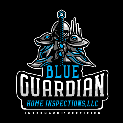 BlueGuardianHomeInspectionLLC.png