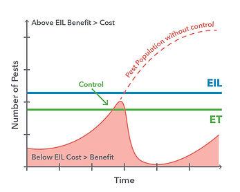 Flattening_the_Curve_Graphs-05.jpg
