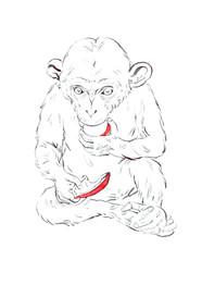 SFaur_Psycho392_Noel_Chimp.jpg