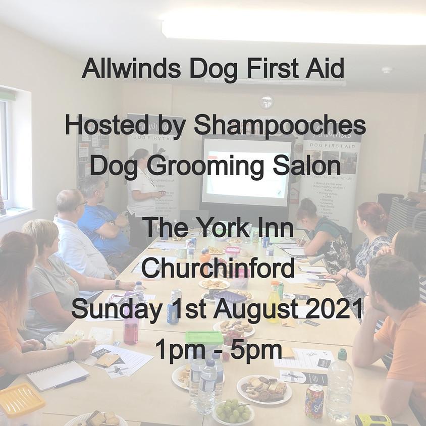 Allwinds Dog First Aid Churchinford