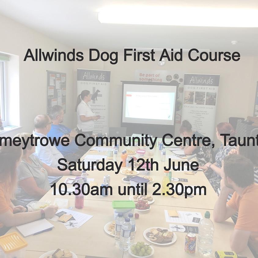 Allwinds Dog First Aid TAUNTON