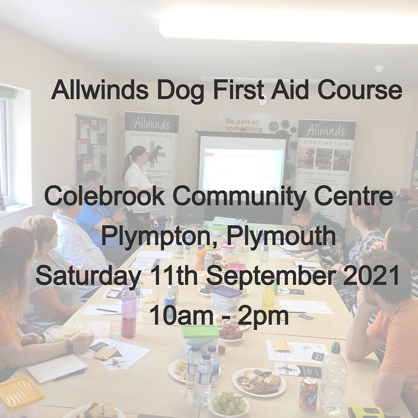 Allwinds Dog First Aid - PLYMOUTH