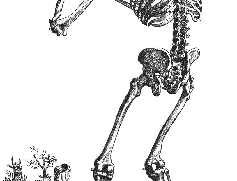 Skeleton Grieving