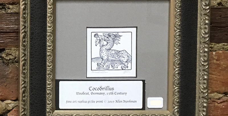 Cocodrillus