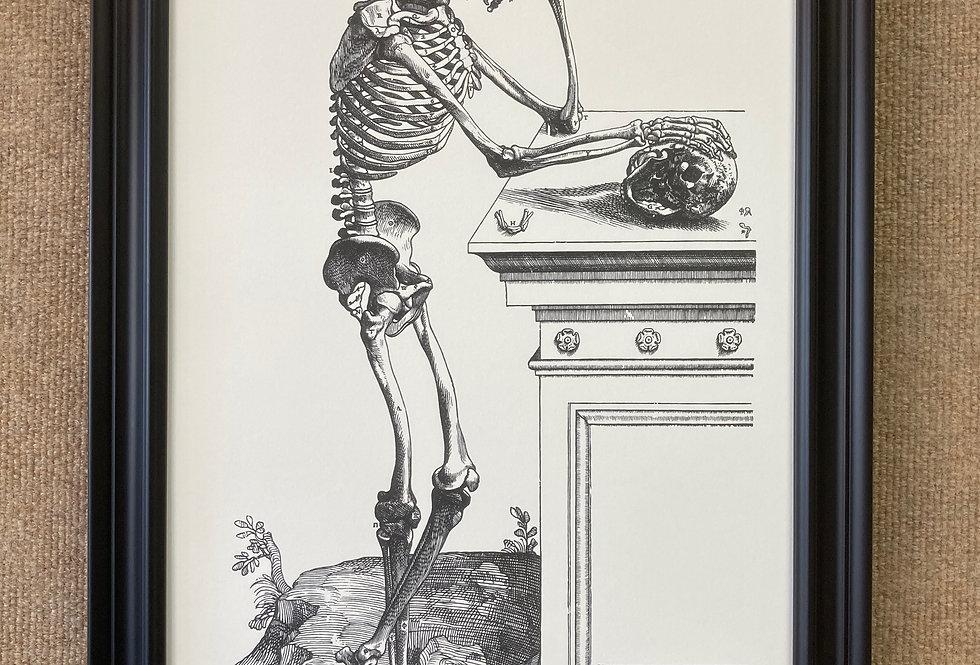 Skeleton with Skull