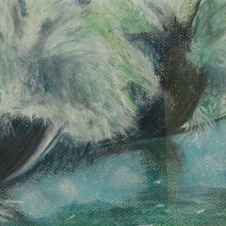ARTAČ IRENA  vrbe ob Krki 31 x 22 pastel