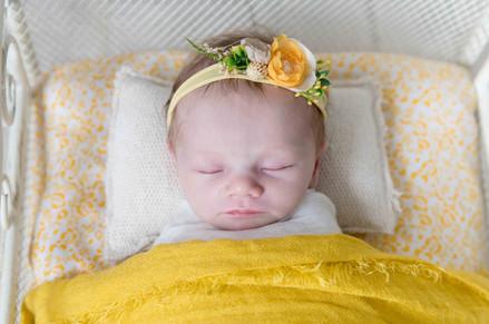 newborn web - 30.jpg