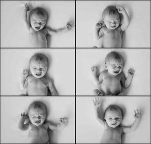 newborn web - 32.jpg