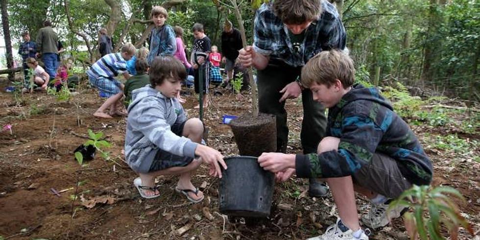 Arbor Day New Zealand