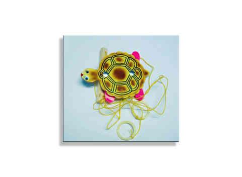 J421 - Tortoise on String