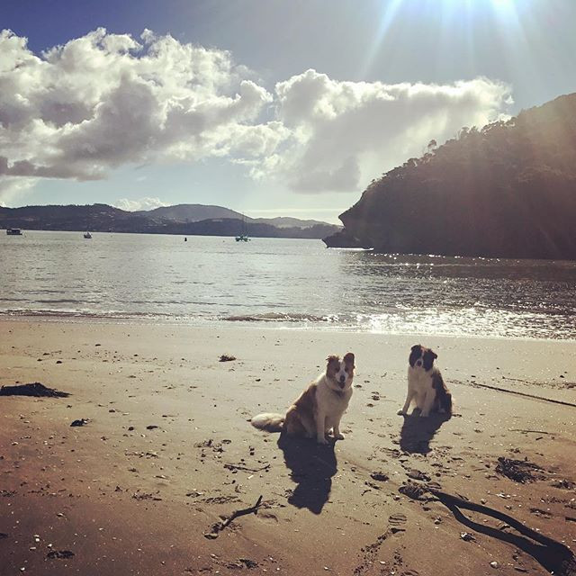 What winter_!❄️Welcome to Winter on the Coromandel - you better get here this weekend to enjoy the sun🌞and tranquility before all those pesk