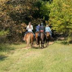 riding the trails at Four Winds Ranch