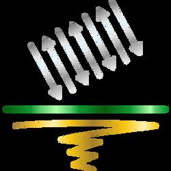 GMO (Transgênicos)