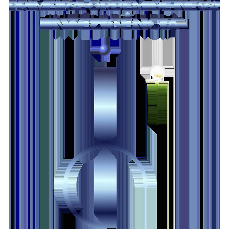 CONSAGRAÇÃO - PRIMEIRA ORDEM DE NEVA