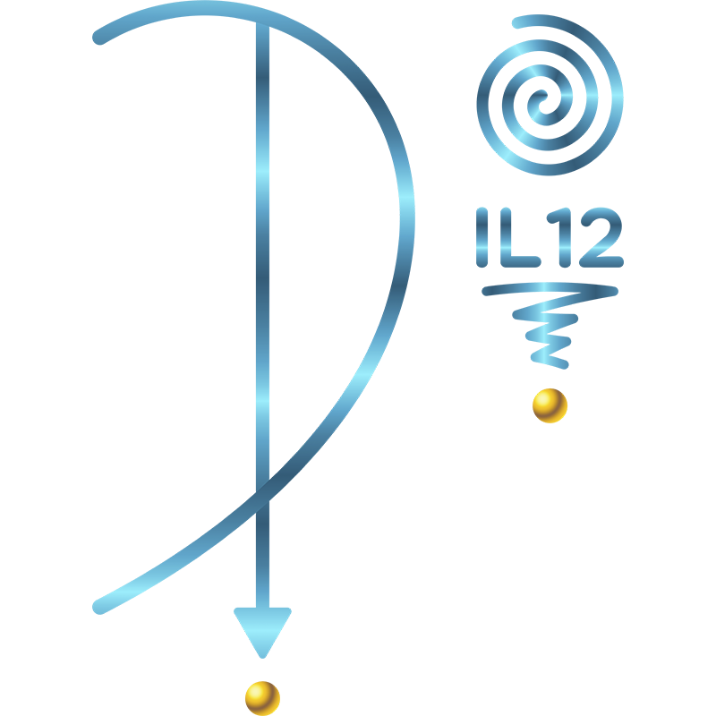 CONSAGRAÇÃO - IL12 (SALA IL12)