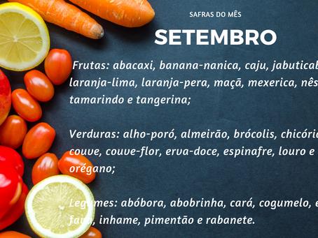 Safra de Setembro| Minimalismo na Alimentação