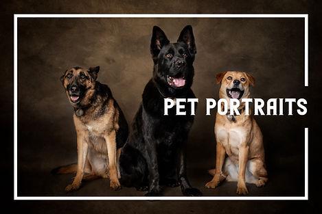 PetPortraits.jpg