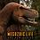 Thumbnail: Tyrannosaurus Rex - 2020 Exclusive Print