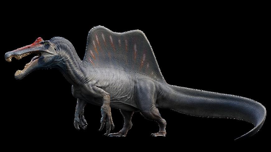 Spinosaurus  1.png