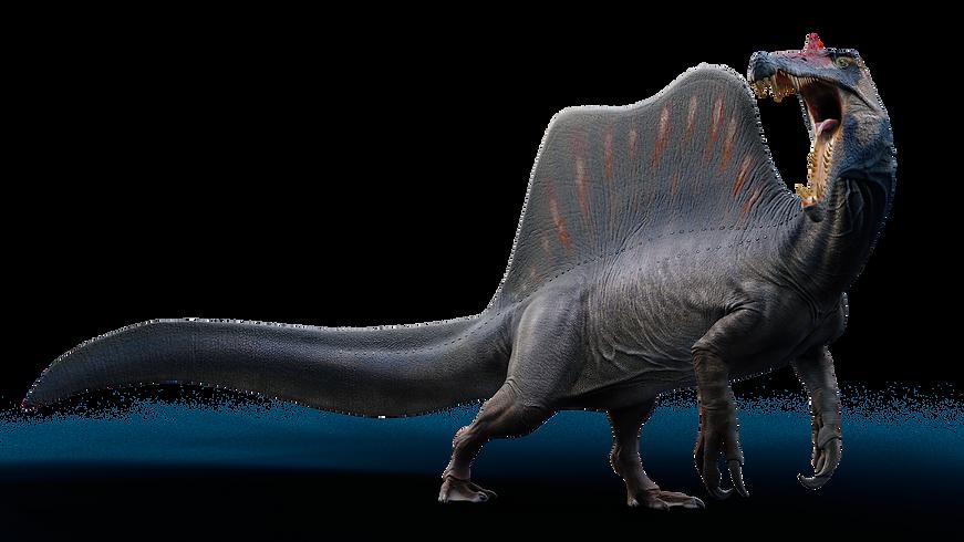 Spinosaurus  5.png