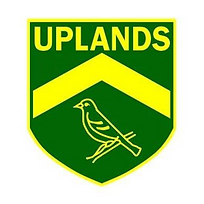 Uplands UFC Party Kit