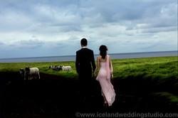 北欧旅拍,私奔到冰岛牧场