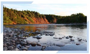 Image of Newfoundland and Labrador wilderness as depicted by the Nature Conservancy of Canada for the Nature Atlas website.
