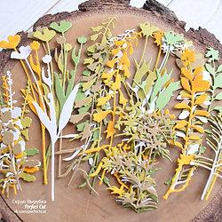 Набор Ботаника NEW из 7 веточек