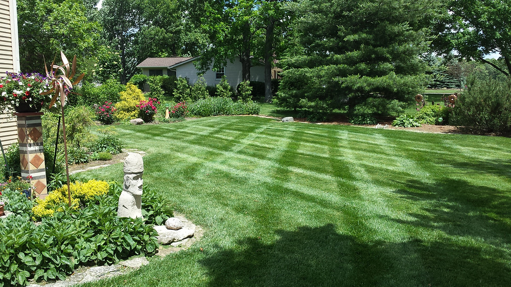 Your yard is your canvas for your landscaping!