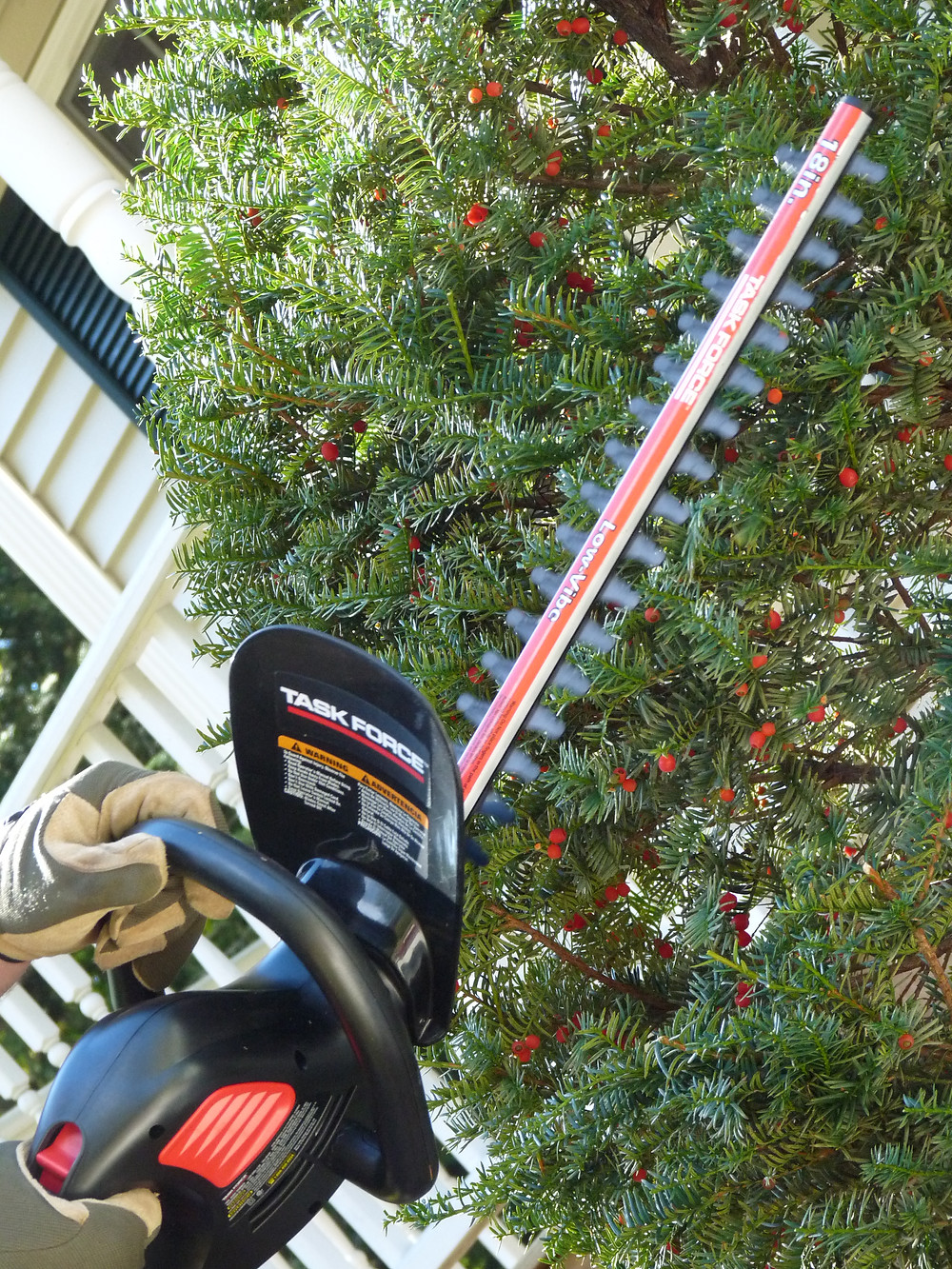 Gas or electric triming shears saves time & energy