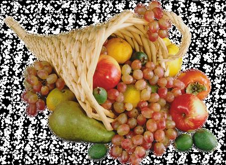 БЕЗОПАСНЫЕ И ЧИСТЫЕ ПРОДУКТЫ. Обработка мяса, рыбы, овощей, фруктов, круп Канген водой.