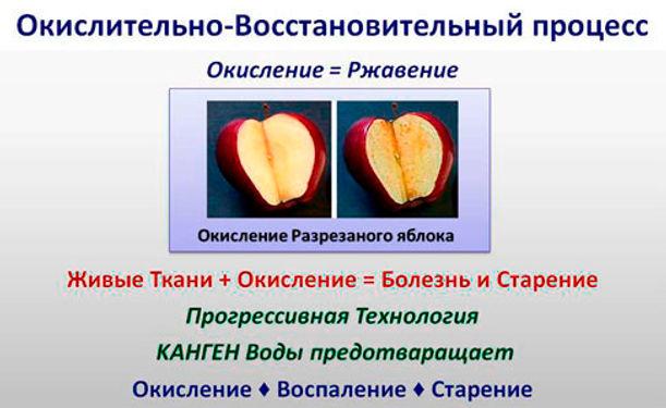 ОКИСЛЕНИЕ ОРГАНИЗМА_+7(926) 954-41-00_ Ионизаторы Японии КУПИТЬ НЕДОРОГО в Москве_www.super-voda.com