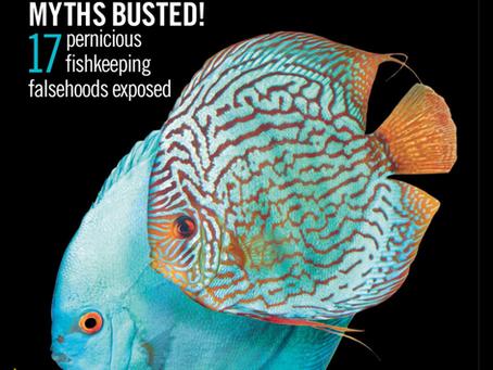 Garden Aquarium Featured in the Practical Fishkeeping Magazine Spring 2020 Edition