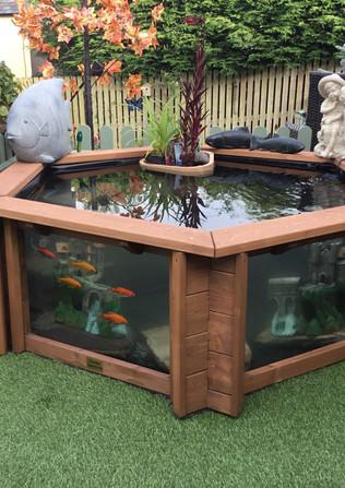 Pam- Lily Clear View Garden Aquarium.jpg