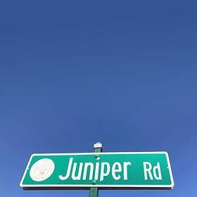 Juniper 1 (2).jpg