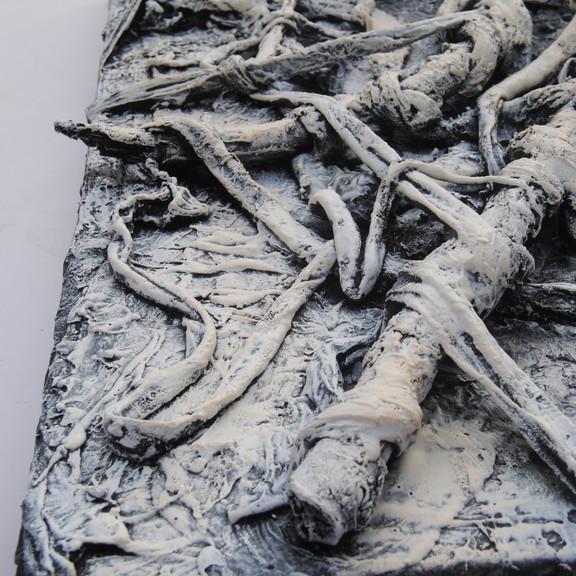 Bones, detail