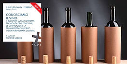 Tecnica degustazione vino