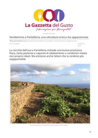 Vendemmia a Pantelleria, una viticoltura eroica e appassionata