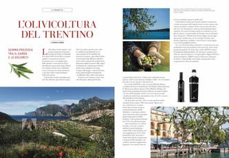 L'olivicoltura del Trentino