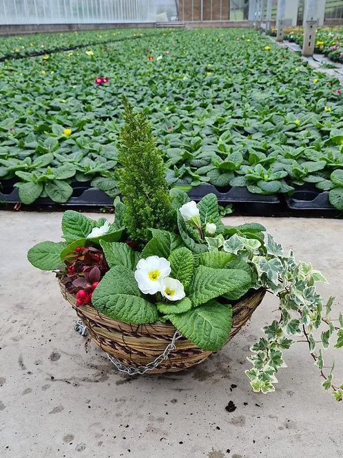 "12"" Designer Wicker Hanging Basket - Planted Container"