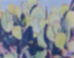 Peek-a-Boo Cactus Wren, colored pencil, copyright 2002 Areena Arjuna Estul.jpeg