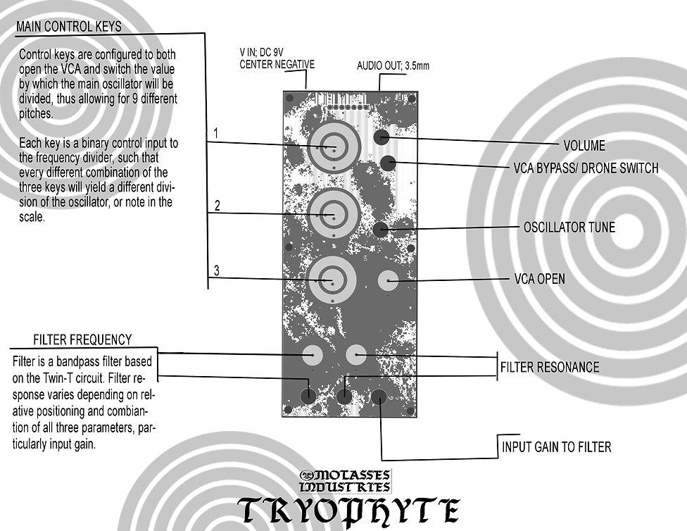 tryophyte copyyyyyy.jpg