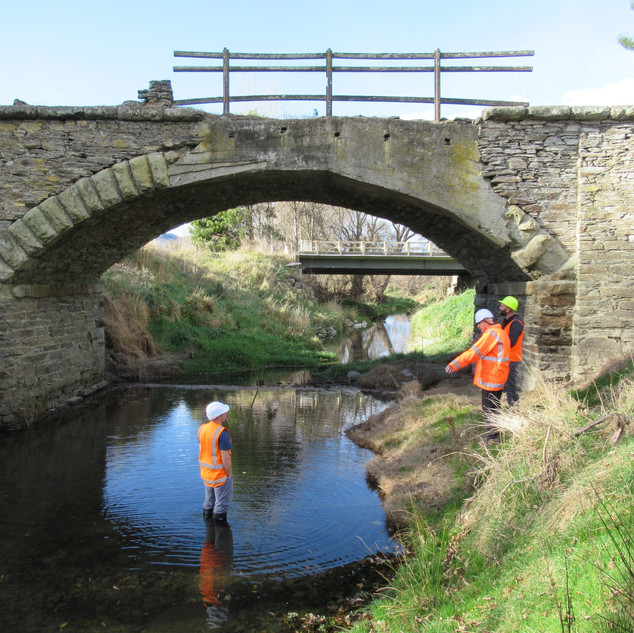 Bowkers Bridge Dunback, Assessment, Wain