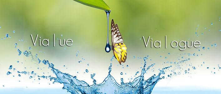 Banner_vialogue.jpg