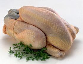 1 poulet à l'unité (8€/kg)