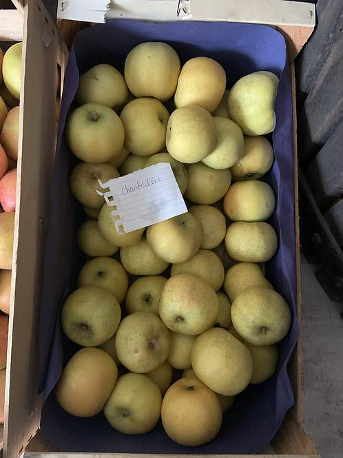 Pommes Chanteclerc 1kg