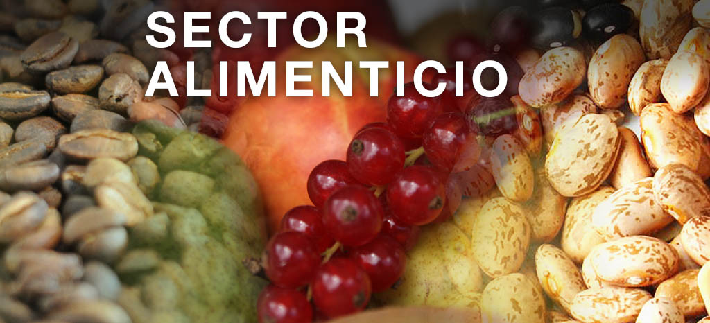 Sector Alimenticio.jpg